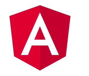 Angular JS web and mobile app development company in the USA